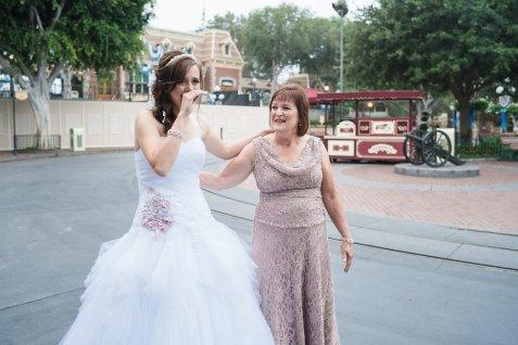 Ben and Kerry Leikin Fairytale Dream Disneyland Wedding Disney's Fairytale Weddings and Honeymoons Kleenex Someone Needs One