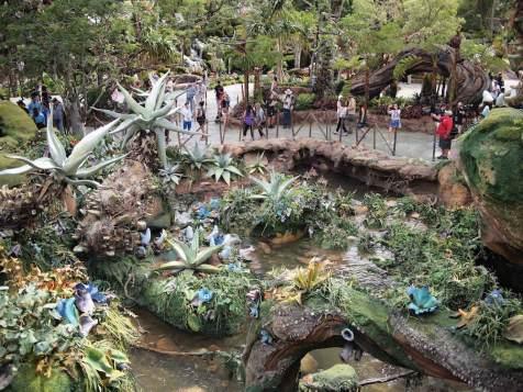 Pandora World of Avatar Grand Opening Coverage DisneyExaminer Plants