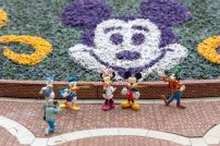 Castle Peak And Railroad Dave Sheegog Mini Disneyland Feature DisneyExaminer Mickey And Friends