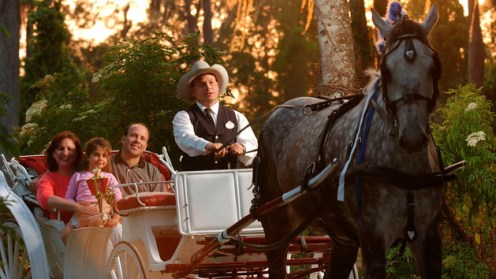 carriage-rides-00