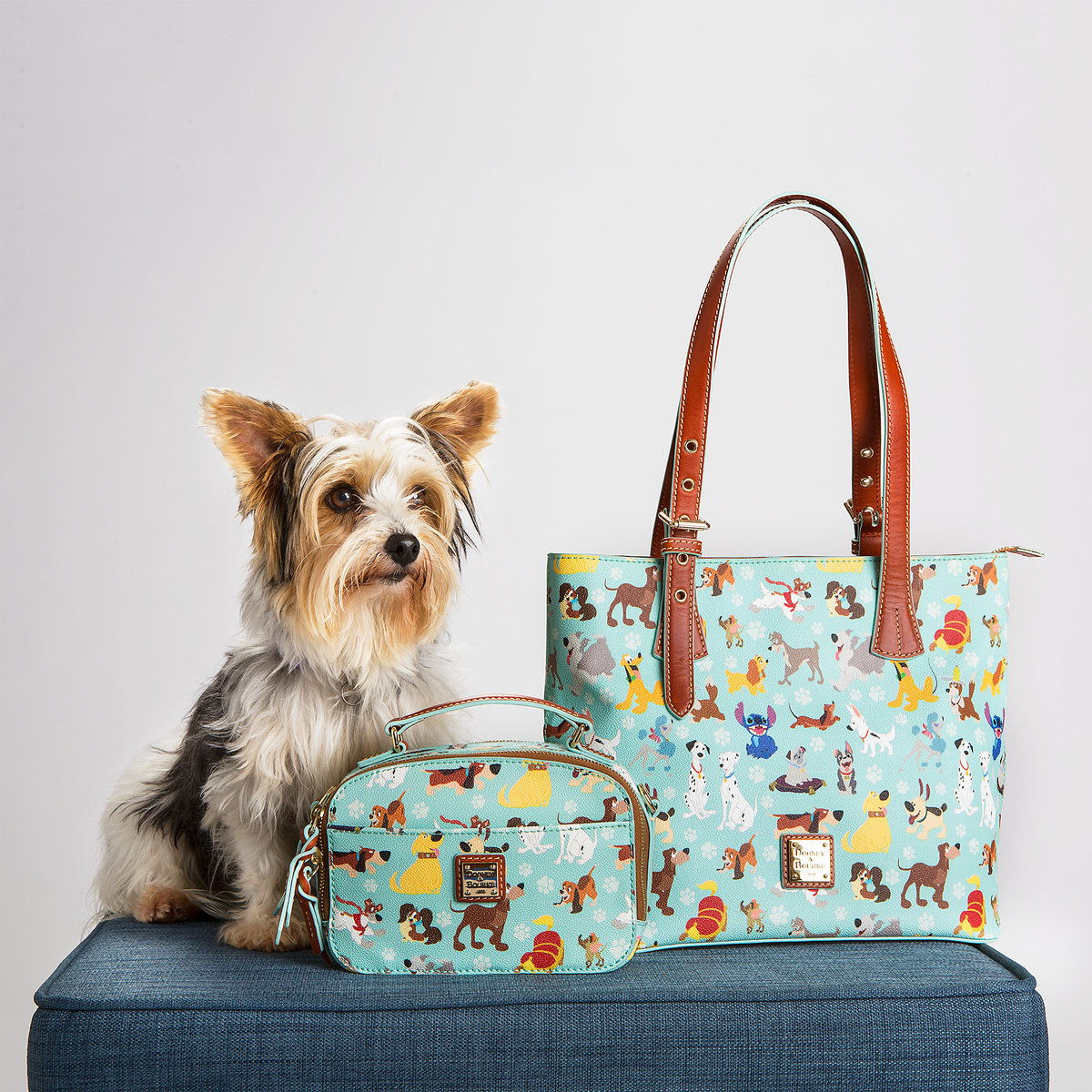 Disney Dogs Dooney And Bourke Available Online Now