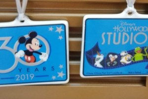 Hollywood Studios 30th Anniversary Merchandise