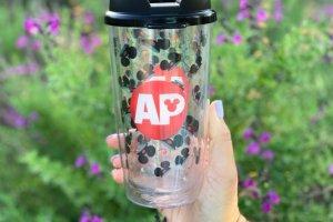 Disneyland AP Tumbler