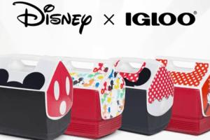 Igloo Disney Coolers