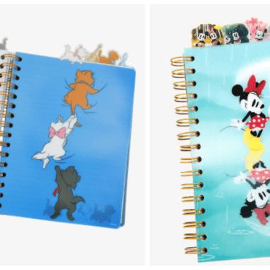 Disney Tab Journals