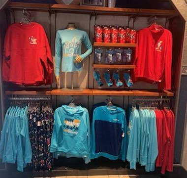 RunDisney 2021 Collection