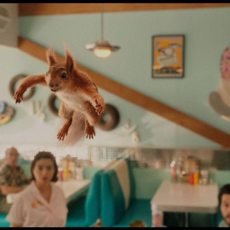 Una ardilla volando dentro de una cafetería