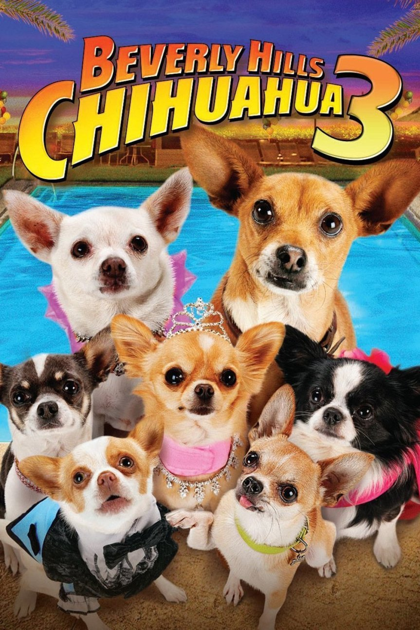 "Poster for the movie ""Beverly Hills Chihuahua 3 - Viva La Fiesta!"""