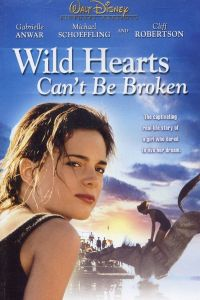 "Poster for the movie ""Wild Hearts Can't Be Broken"""