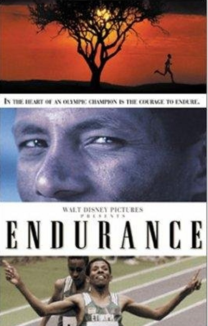 """Poster for the movie """"Endurance"""""""