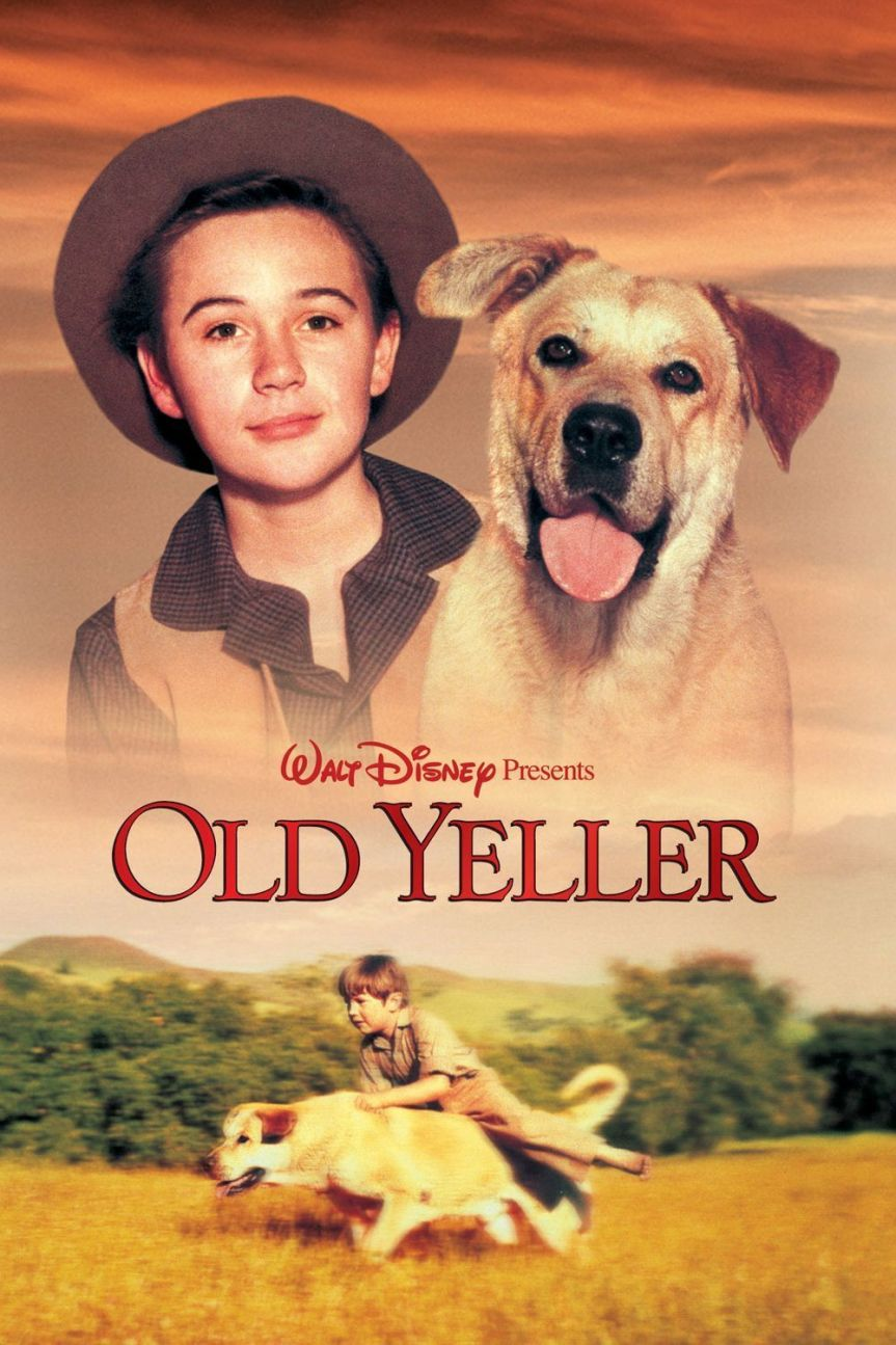 """Poster for the movie """"Old Yeller"""""""