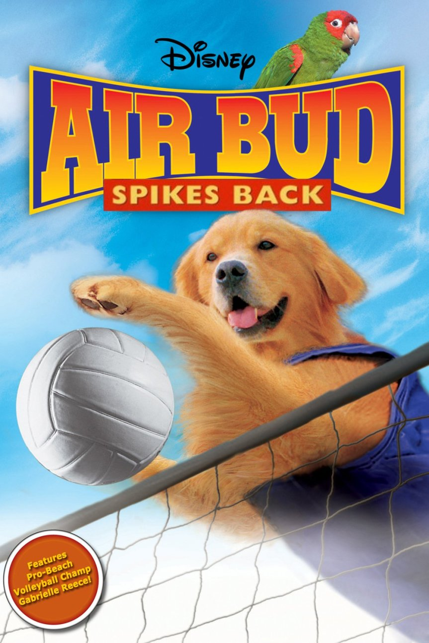 "Poster for the movie ""Air Bud: Spikes Back"""