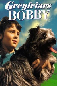 "Poster for the movie ""Greyfriars Bobby: The True Story of a Dog"""
