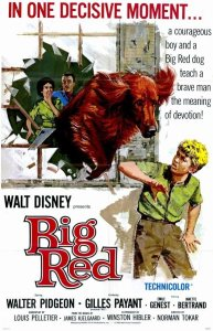 "Poster for the movie ""Big Red"""