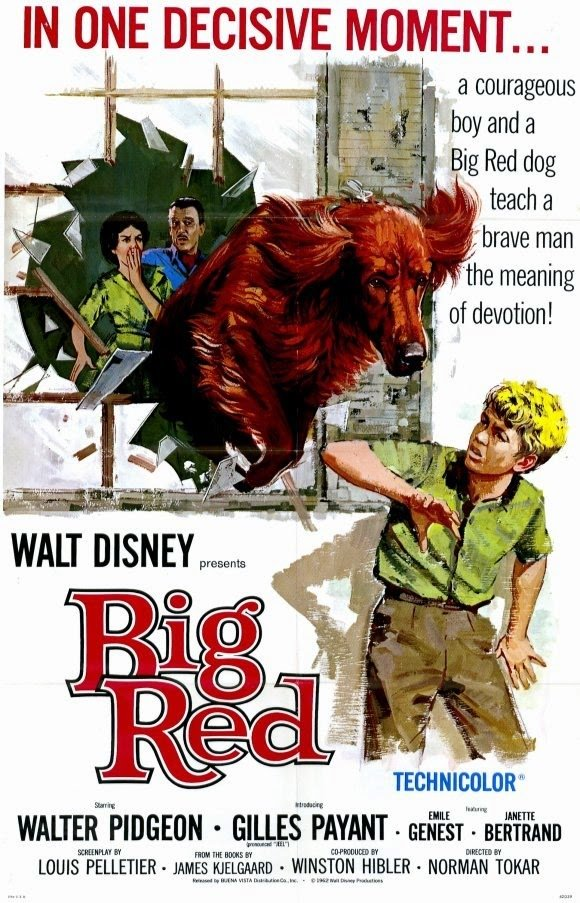 """Poster for the movie """"Big Red"""""""
