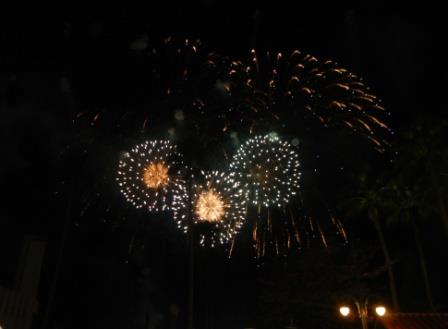 Disney World fireworks 4th of july