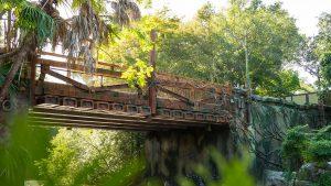 pandora world of avatar bridge