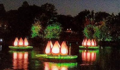 rivers of light live stream