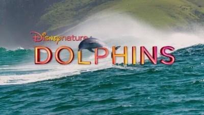 Disneynature Dolphins (Movie)