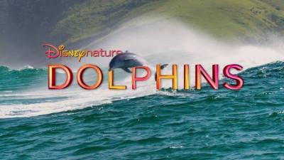 Disneynature Dolphins (Movie)