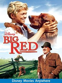 Big Red (1962 Movie)