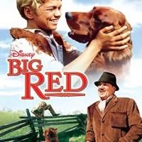 Big Red (1962 Movie)