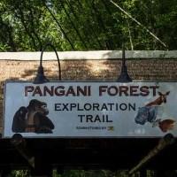 Pangani Forest Exploration Trail (Disney World)