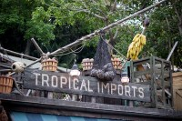 Tropical Imports (Disneyland)