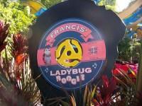 Francis Ladybug Boogie