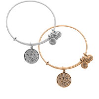 Anna and Elsa Bangle by Alex and Ani – Frozen