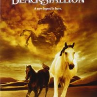 The Young Black Stallion (2003 Movie)