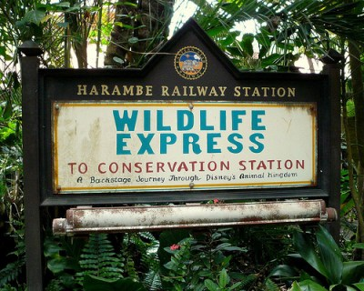 Wildlife Express Train (Disney World Ride)