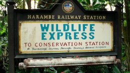 Wildlife Express Train (Disney World)