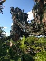 Avatar Flight of Passage (Disney World Ride)
