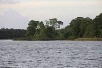 Discovery Island   Extinct Disney World Attractions