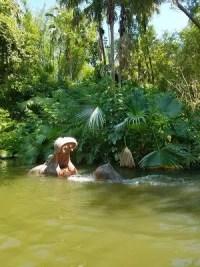 Jungle Cruise (Disney World)