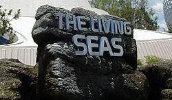 the living seas epcot disney world