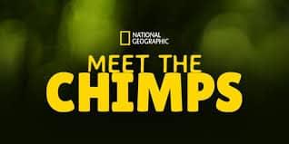 Meet the Chimps (Disney+ Show)