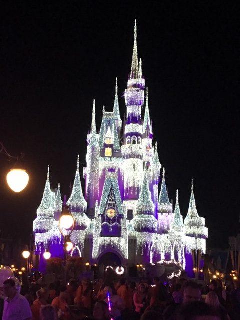 Episode 58- Holidays at Walt Disney World 2019