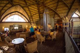Club Level Lounge at Animal Kingdom Lodge at Walt Disney World