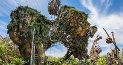 Disney Pandora flight