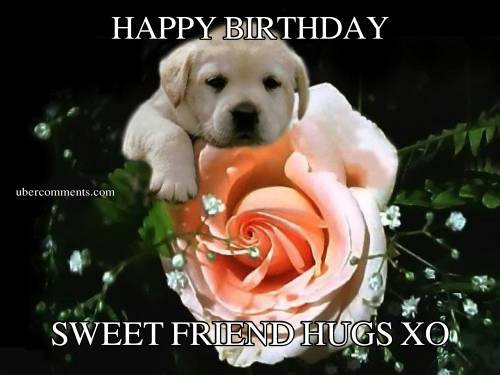 HAPPY BIRTHDAY SWEET FRIEND HUGS XO Birthday Graphics For Facebook Tagged Facebook Tumblr