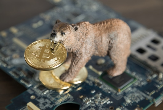 how to spot a bear market cryptocurrency