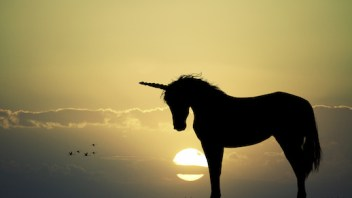 LinkedIn still a unicorn, rather than a donkey