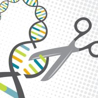 100. Why CRISPR is Overrated and Gene Drives are Terrifyingly Powerful   Gabriel Licina