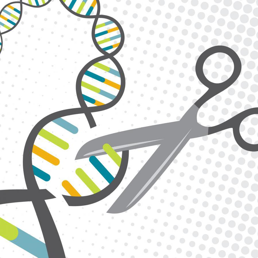 genetic editing with crispr