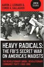 heavy radicals_DV