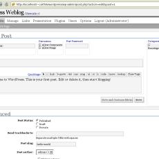 WordPress Post Screen