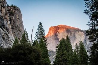 12 09 23 Yosemite valley floor-12