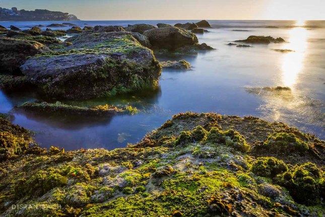 distanbach-Bronte beach sunrise-3